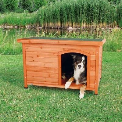 cabane en bois de chez Trixie