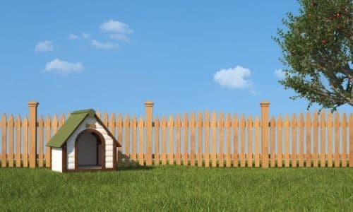 niche à chien dans le jardin